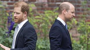 Urla, imprecazioni e insulti. Harry e William hanno discusso del litigio: il contesto della cerimonia, tutta colpa di Kate