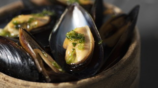 Toxic mussels, very serious health risks: here is the famous product to avoid |  Look