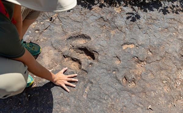 Stati Uniti, esseri umani presenti 23mila anni fa: trovate le impronte che riscrivono la storia